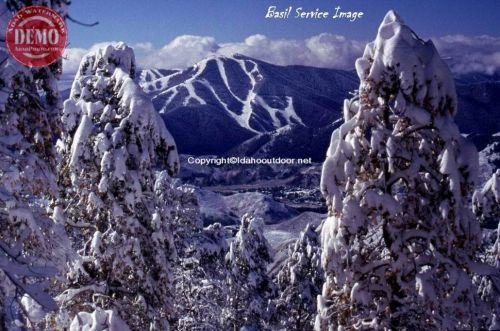 Bald Mountain Sun Valley Idaho Snow on Aspens