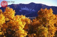 Johnston Peak Fall Pioneer Mountains