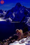 DEO Sawtooth Lake Sawtooths
