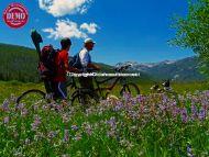 Mountain Bikers Elk Meadows Sawtooths