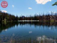 Fire Ravaged Knapp Lake