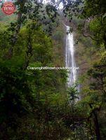 Maui Hana Coast Hawaii Wailua Falls