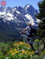 Fishhook Ridge Sawtooth Mountain Biker