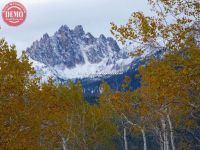 Sawtooth Fall Colors Fishhook Aspen