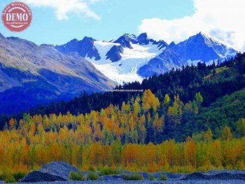 Fall Colors Exit Glacier Alaska