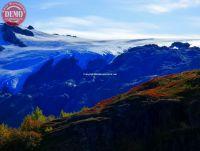 Alaska Fall Colors Exit Glacier